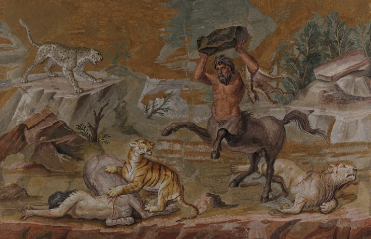 The centaur mosaic was found in the 18th century on the site of the sprawling, luxurious villa complex near Tivoli that once belonged to the Roman emperor Hadrian. The mosaic was found in situ along with other smaller ones that bore depictions of landscapes, animals and masks. The relatively small central panel (emblema) formed part of the floor decoration for the dining room (triclinium) in the main palace. The various individual scenes of these mosaic pictures bear depictions of wild, inhospitable landscapes that deliberately contrast with idyllic ones featuring animals living in harmony with each other. The dangers of the wild are portrayed in this mosaic in the dramatic struggle between great cats and a pair of centaurs, mythological creatures with the head, arms, and torso of a man and the body and legs of a horse. On a rocky outcrop that hangs over a terrific chasm that runs parallel to the bottom of the picture, a pair of centaurs have been pounced on by great cats. While the male centaur has been able to defend itself successfully from the lion, the tiger has managed to bring the female centaur to the ground and is clawing her side. The male centaur rushes to his companion's side, rearing his legs in the air while holding a rock aloft above his head. Undaunted, the tiger seems intent on not surrendering its prey. Even though one lion already lies fatally wounded, bleeding and with its claws retracted, the outcome of the struggle is anything but clear because in the background (whose spatial depth is achieved through the staggered arrangement of rock forms and impressive gradations of colour) we see yet another foe for the centaur: a leopard ready to pounce. While depictions in older Greek art tended to emphasise the bestial side of centaurs, later depictions increasingly focussed on their human qualities. Lucian, a writer from the 2nd century, records that the Greek painter Zeuxis (active around 400 BCE) became famous for his painting of a family of centaurs
