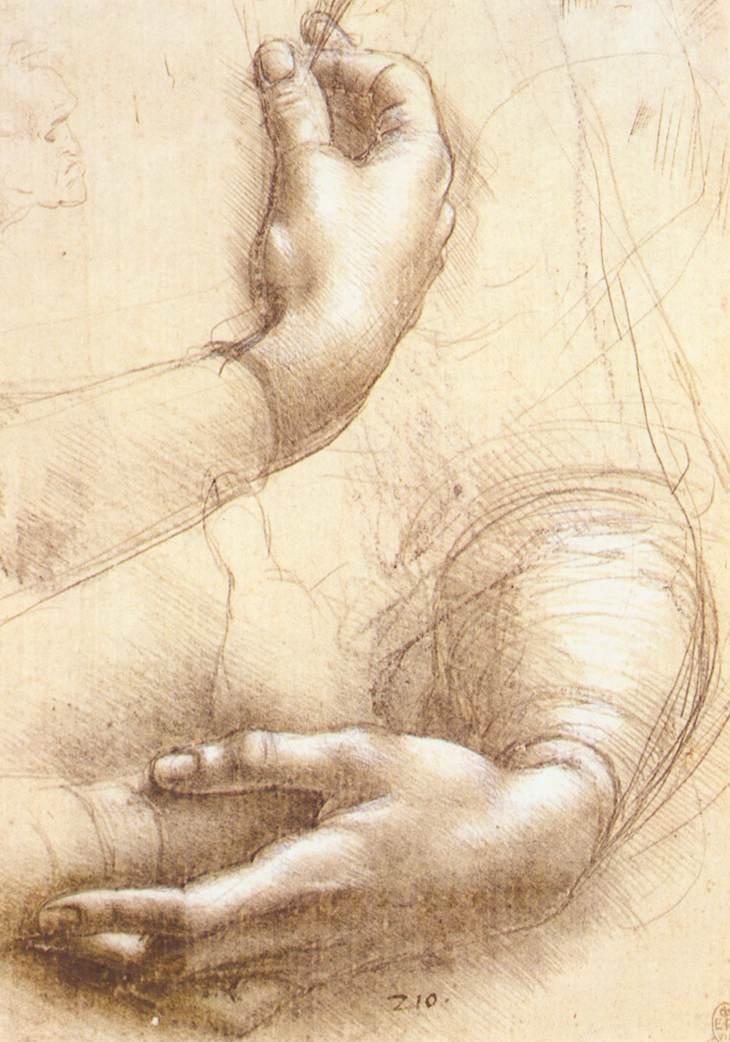 study-of-hands